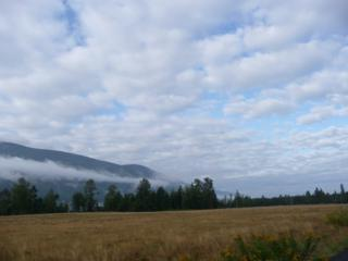 0-Lot 7  Windsong Lane  , Sedro Woolley, WA 98284 (#756680) :: Home4investment Real Estate Team