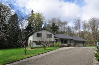 1280  Puget Dr E , Port Orchard, WA 98366 (#756991) :: Better Homes and Gardens McKenzie Group