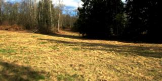 7  Thomas Creek Dr  , Sedro Woolley, WA 98284 (#758644) :: Home4investment Real Estate Team