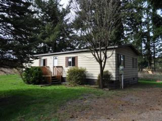 2408 E 66th Terr  , Everson, WA 98247 (#758924) :: Home4investment Real Estate Team