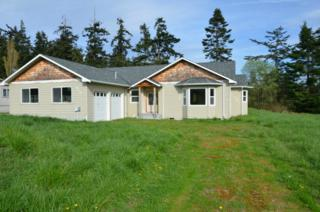 930  Donald Ave  , Oak Harbor, WA 98277 (#761358) :: Home4investment Real Estate Team