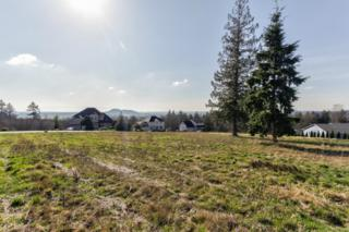 8178  Avery Lane  , Sedro Woolley, WA 98284 (#761677) :: Home4investment Real Estate Team