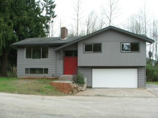 27516  State Route 20  , Sedro Woolley, WA 98284 (#762651) :: Home4investment Real Estate Team