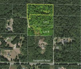 0-Lot D SE Sedgwick Rd  , Port Orchard, WA 98367 (#763123) :: Better Homes and Gardens McKenzie Group