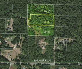 0-Lot C SE Sedgwick Rd  , Port Orchard, WA 98367 (#763128) :: Better Homes and Gardens McKenzie Group