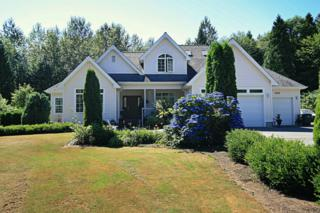 5191  Olson Rd  , Ferndale, WA 98248 (#764048) :: Home4investment Real Estate Team