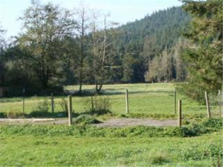 248-XX  Woods Creek Road  , Snohomish, WA 98290 (#764960) :: Home4investment Real Estate Team
