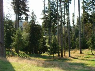 248-XX  Woods Creek Road  , Snohomish, WA 98290 (#764971) :: Home4investment Real Estate Team