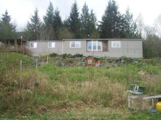 26700  Paramount Lane  , Sedro Woolley, WA 98284 (#767674) :: Home4investment Real Estate Team