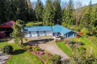 2773  Cruse Rd  , Sedro Woolley, WA 98284 (#768739) :: Home4investment Real Estate Team