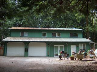 22245  Neat Ave NE , Kingston, WA 98246 (#772137) :: Home4investment Real Estate Team