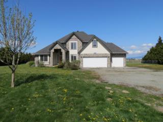 16245  Calhoun Rd  , Mount Vernon, WA 98273 (#772877) :: Home4investment Real Estate Team