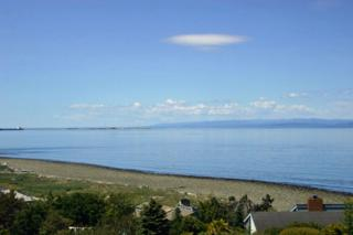 9999  Sea View Dr  , Port Angeles, WA 98362 (#774767) :: Home4investment Real Estate Team