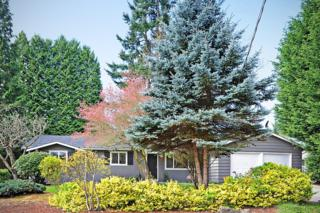 7333  125th Place SE , Newcastle, WA 98056 (#775291) :: Exclusive Home Realty