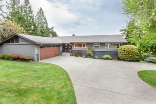 9858 NE 33rd St  , Bellevue, WA 98004 (#776414) :: Exclusive Home Realty