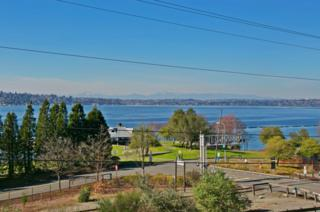 1700  Lake Washington Blvd N 203, Renton, WA 98056 (#776568) :: Exclusive Home Realty