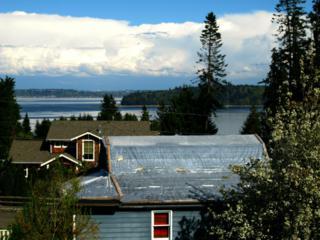 1036  Puget Dr SE , Port Orchard, WA 98366 (#777410) :: Mike & Sandi Nelson Real Estate