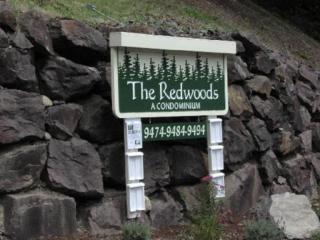 9474  Redmond-Woodinville Rd NE A306e, Redmond, WA 98052 (#781096) :: Exclusive Home Realty