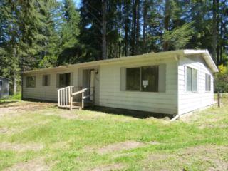2111  197TH Ave KP , Lakebay, WA 98349 (#781229) :: Home4investment Real Estate Team