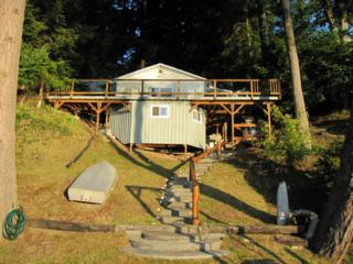 415 E Herron Blvd  , Lakebay, WA 98349 (#783996) :: Priority One Realty Inc.