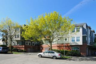 2101  North 55th Street  213, Seattle, WA 98103 (#784112) :: Exclusive Home Realty