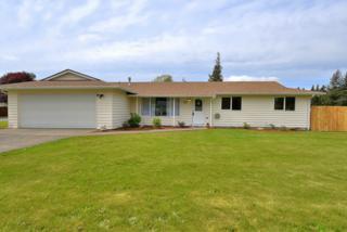 205  Pollman Cir  , Lynden, WA 98264 (#786045) :: Home4investment Real Estate Team
