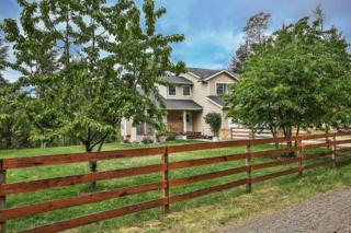 1310  197th Ave KP , Lakebay, WA 98349 (#786611) :: Priority One Realty Inc.