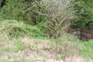 39474  Cape Horn Rd  , Sedro Woolley, WA 98237 (#787145) :: Home4investment Real Estate Team