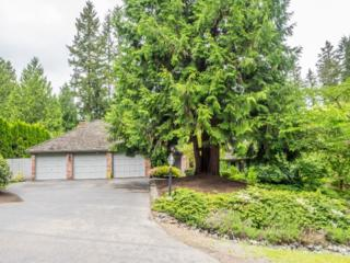 18226 NE 154th St  , Woodinville, WA 98072 (#788071) :: Exclusive Home Realty