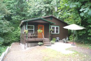 627  Dwight St  , Port Orchard, WA 98366 (#788847) :: Mike & Sandi Nelson Real Estate