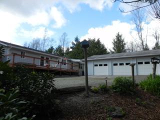 117  Cain Lake Rd. Alger  , Sedro Woolley, WA 98284 (#789019) :: Exclusive Home Realty