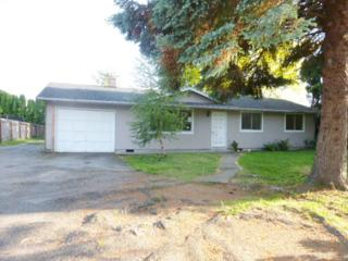 813  Lucas Dr  , Sedro Woolley, WA 98284 (#789521) :: Home4investment Real Estate Team