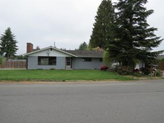 814  Evans Dr  , Sedro Woolley, WA 98284 (#790974) :: Home4investment Real Estate Team