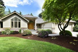 8858  Dunlin Ct  , Blaine, WA 98230 (#791760) :: Home4investment Real Estate Team