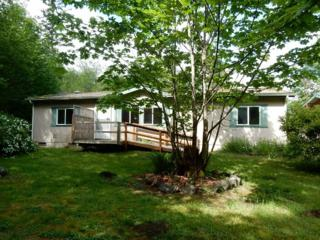 13001  116th St KP , Gig Harbor, WA 98329 (#792083) :: Home4investment Real Estate Team