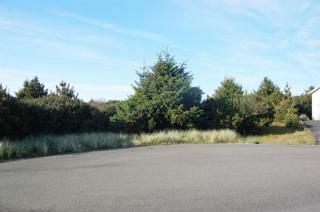 820  Prosper Ct  , Ocean Shores, WA 98569 (#792533) :: Nick McLean Real Estate Group