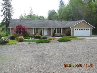 126  Old Sand Creek Rd  , McCleary, WA 98557 (#792692) :: Home4investment Real Estate Team