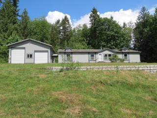 34469  Hamilton Cemetery Rd  , Sedro Woolley, WA 98284 (#794254) :: Home4investment Real Estate Team