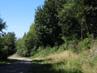 0-Lot 70  Bacus Lane  , Sedro Woolley, WA 98284 (#600802) :: Home4investment Real Estate Team