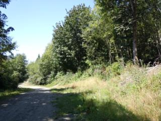 0-Lot 71  Bacus Lane  , Sedro Woolley, WA 98284 (#600894) :: Home4investment Real Estate Team