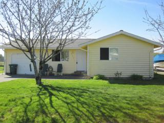 8393  Pheasant Dr  , Blaine, WA 98230 (#616592) :: Home4investment Real Estate Team