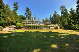 3208  Smugglers Cove Rd  , Greenbank, WA 98253 (#675918) :: Home4investment Real Estate Team
