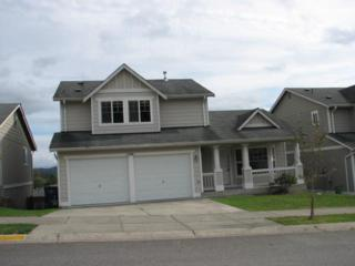 1244  Arrezo Dr  , Sedro Woolley, WA 98284 (#700646) :: Home4investment Real Estate Team