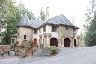 12825  Issaquah-Hobart Rd SE , Issaquah, WA 98027 (#717746) :: Nick McLean Real Estate Group