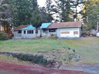 19015  99th St KP , Vaughn, WA 98394 (#738008) :: Priority One Realty Inc.