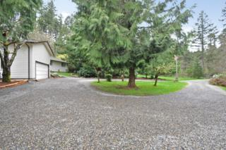 1360  Mowitsh Dr  , Fox Island, WA 98333 (#762387) :: Keller Williams Realty