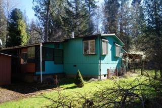 168 W Satko Glen  , Elma, WA 98541 (#763145) :: Home4investment Real Estate Team