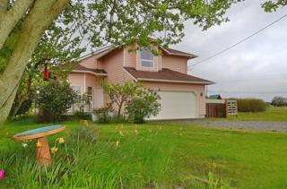 4393  Saltspring Dr  , Ferndale, WA 98248 (#769864) :: Home4investment Real Estate Team