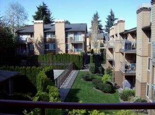 8252  126th Ave NE D303, Kirkland, WA 98033 (#770330) :: Exclusive Home Realty