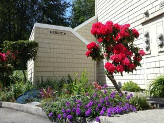 11713  93rd Ave NE B-6, Kirkland, WA 98034 (#773549) :: Exclusive Home Realty